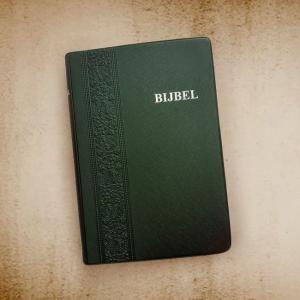 Bijbel Vinyl Groen NBG-1951